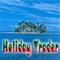 Holiday Trader