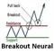 Breakout Neural