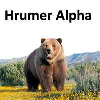 Hrumer Alpha