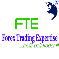 Forex Trading Expertise