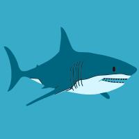 Shark Forex Ea