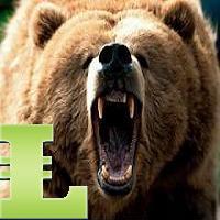 Bears MACD MT5