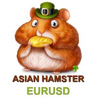 Asian Hamster