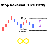Stop Reversal Re Entry