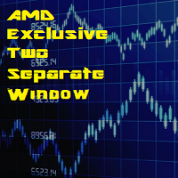 AMD Exclusive Two Separate Window