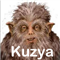 Kuzya