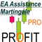 EA assistance Martingale averaging manual