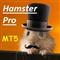 Hamster PRO MT5