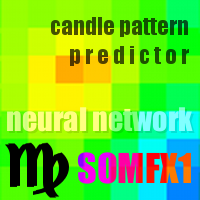 SOMFX1Predictor