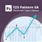PZ 123 Pattern EA