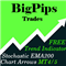 Big Pips Trades MT4 Trend Indicator