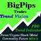 BigPips Trend Vision Indicator MT4