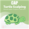 Turtle Scalping EA