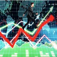 Alfa Capital Expert XL