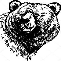 Bears Sell