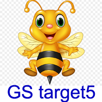 GS target5