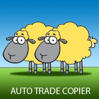 Auto Trade Copier