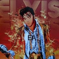 Elvis79