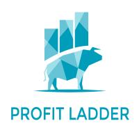Profit Ladder Mt5 EA