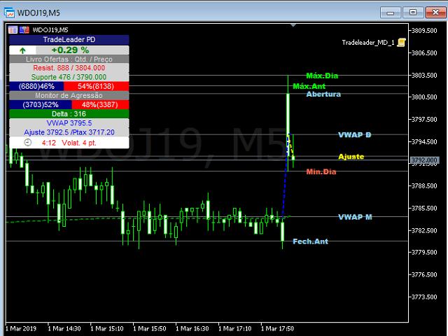 TradeLeader Dolar Pontos Decisivos