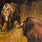 War bears and bulls