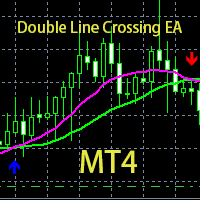 Double Line Crossing EA