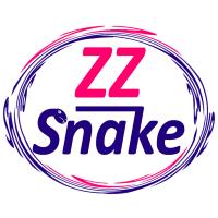 ZZ Snake