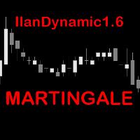 IlanDynamic16