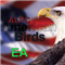 Alpc American Birds