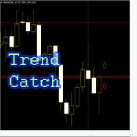 Trend Catch
