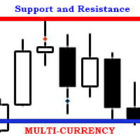 SR Multi Currency