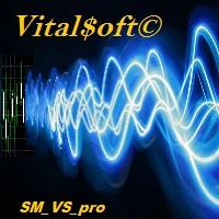 SafeMartin VS pro