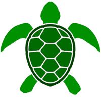 Turtle Signal