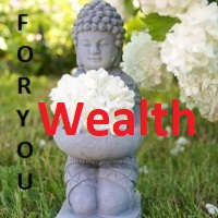 FY Wealth
