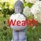 FY Wealth