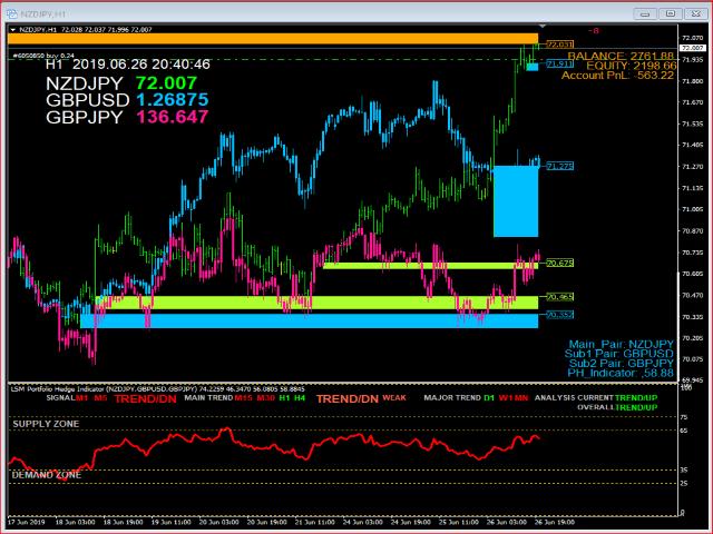 LSM Portfolio Hedge Indicator