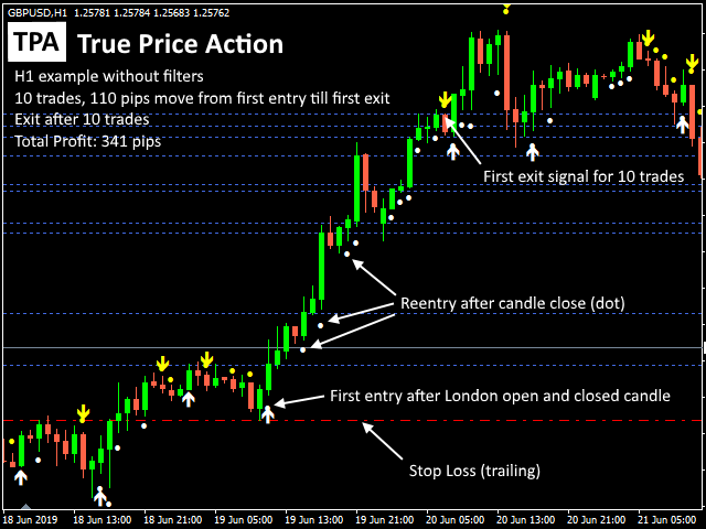 TPA True Price Action MT4 Indicator