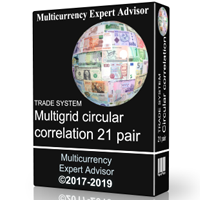 TS Multigrid circular correlation 21 pair