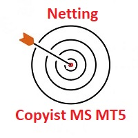 Copyist MS MT5 netting