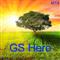 GS Hero