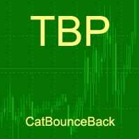 Cat bounce back