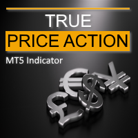 TPA True Price Action MT5 Indicator