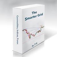 The Smarter Grid