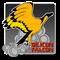CEF Silicon Falcon