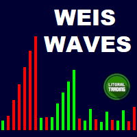 LT Weis Waves