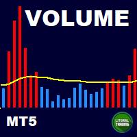 LT Volume