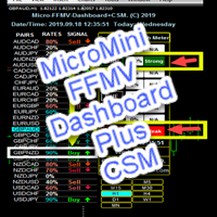 MicroMini FFMV Dashboard and CSM
