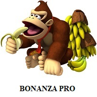 Bonanza Pro