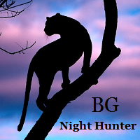 BG Night Hunter