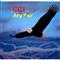 CCI ma Multi anyPair